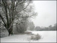 Wyken Slough in the snow