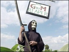a protester in a field of GM corn
