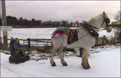 Horse chariot in the snow. Photo: Georgina Flower