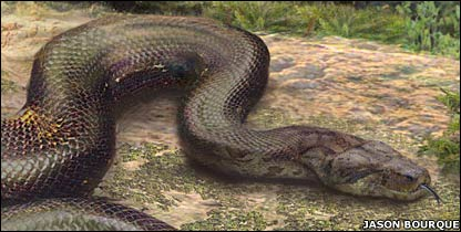 Serpiente gigante (Imagen: Jason Bourque)