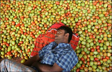 A man sleeps on a bed of tomatoes in Dhaka, Bangladesh