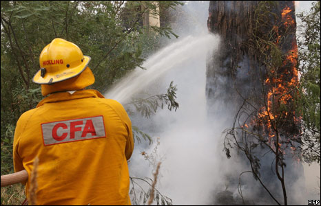 Firefighters work in the bush on the road to Kinglake