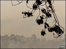 Ash darkens the sky over bush fires