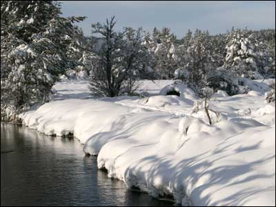 Deep snow in Aviemore. Sent in by Lynda Macleod from Muir of Ord.