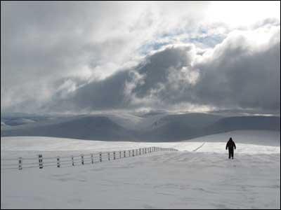 "Derek Grieve's friend ""Frank"" descending from the summit of Broadlaw in the Borders near Moffat."