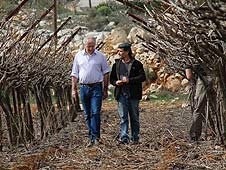 Yoram Cohen and Jeremy Bowen at vineyard