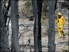 A firefighter walks among the blackened remains of trees following devastating bushfires in Bendigo, Australia, on Tuesday
