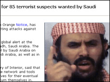 Screen grab from February's Interpol alert on website