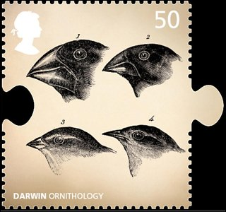Darwin ornithology stamp