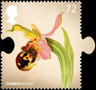 Darwin botany stamp