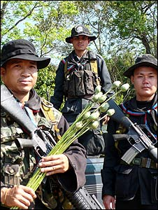 Members of the Thai eradication force