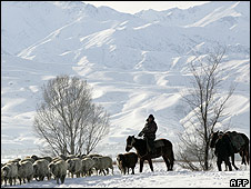 Kyrgyz herdsmen looking after sheep (Photo: VYACHESLAV OSELEDKO/AFP/Getty Images)