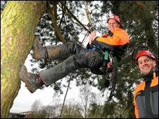 Tall tree climbing