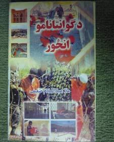 Guantanamo's Picture