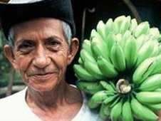 Equador farmer holding a stem of bananas