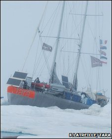 Tara in ice (F.Latreille/www.taraexpeditions.org)