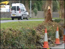 Anglesey crash scene