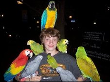 Volunteer and parrots