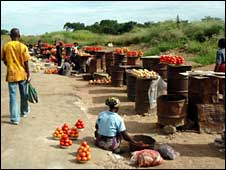 Many Zambians in rural areas depend on roadside markets for income