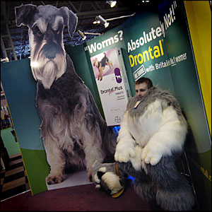 Stand for worming tablets at the show