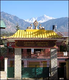 Mountains behind the roof of a Tibetan monastery in Dharamsala (Image: Eleanor Thomas)