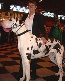 Ronnie Jones and her dog Jester at Crufts
