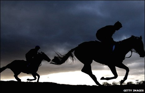 Horses gallop at Cheltenham, UK