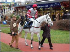 Jockey at Cheltenham