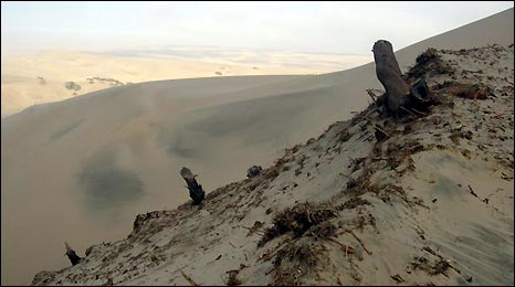 Desert scene, Peru