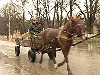 Повозка в селе Чобручи