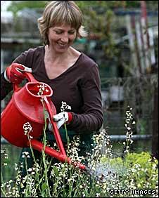 Julie Sumner working on her plot