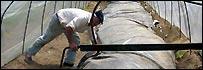 Trabajando en un biodigestor