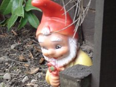 Graeme the gnome