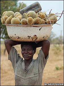 Carrying baobab fruit (Miranda Spitteler/Tree Aid)