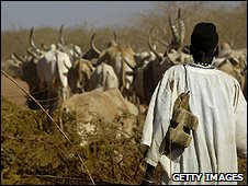 African herdsman with his livestock (Getty Images)