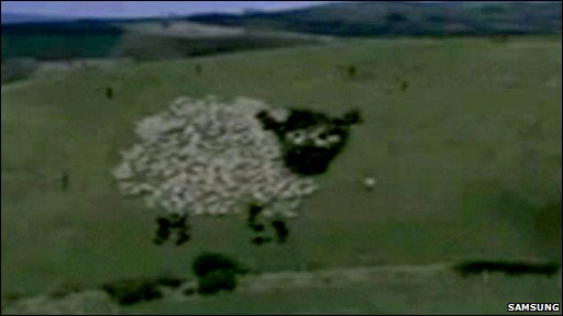Aerial view of a flock of sheep arranged as a giant sheep