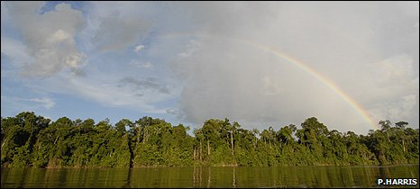 Rainbow over a tropical forest (Image: Paul Harris/Earthwatch)
