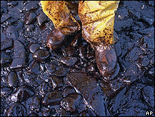Oil from Exxon spillage