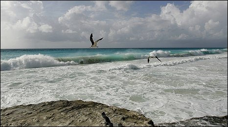 Beach at Cancun, south-east Mexico