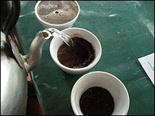 Cupping process at Oro Verde