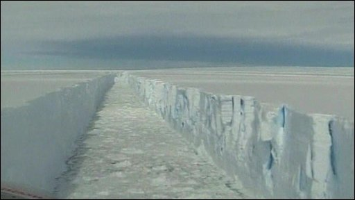 Wilkins ice shelf