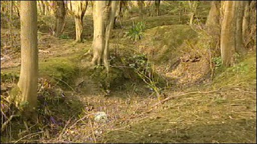 System of WW1 Trenches in Kent