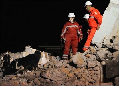 Спасатели с собаками