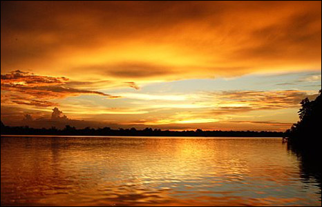 Borneo sunset by Sarah Sheldon