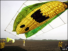 Greenpeace activists flying a kite displaying a giant corn cob over a field in Germany, 3 May 05