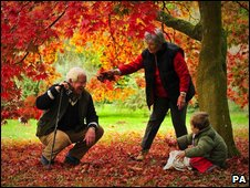 Elderly couple with grandson look at falling leaves