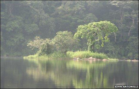 Ivindo River