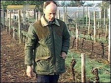 Richard Liwicki in his vineyard