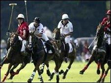 File  photo of polo match