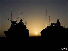 Jackal in Afghanistan